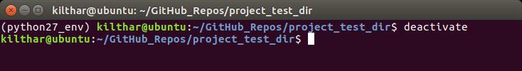 Deactivate user defined Python version environment